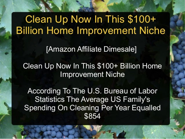 Clean Up Now In This $100+Billion Home Improvement Niche       [Amazon Affiliate Dimesale] Clean Up Now In This $100+ Bill...