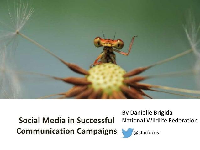 Social Media in Successful Communication Campaigns @starfocus By Danielle Brigida National Wildlife Federation