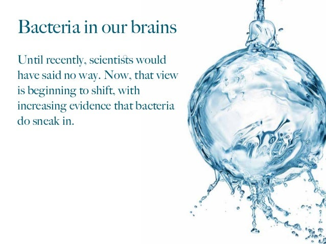 Bacteria in our brains Until recently, scientists would have said no way. Now, that view is beginning to shift, with increa...