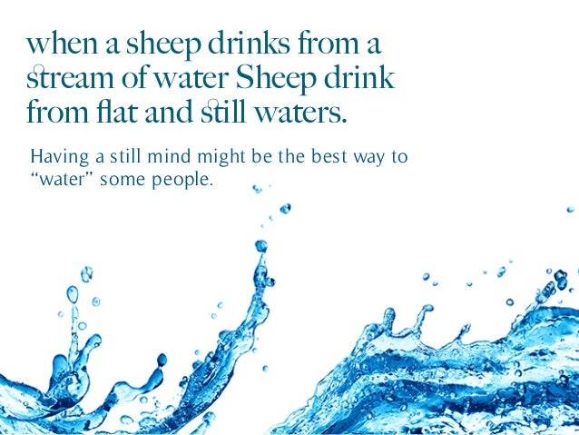 when a sheep drinks from a stream of water Sheep drink from flat and still waters. Having a still mind might be the best way ...