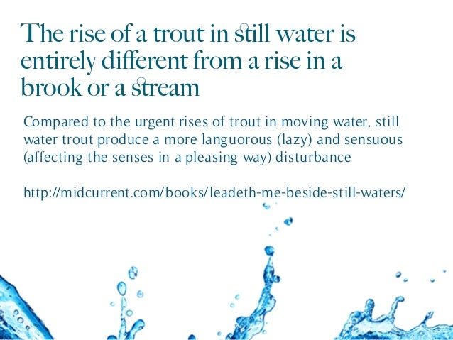The rise of a trout in still water is entirely different from a rise in a brook or a stream Compared to the urgent rises of t...
