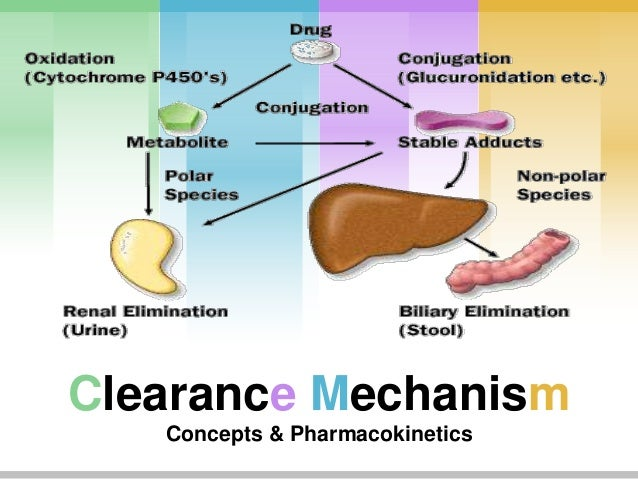 Clearance Mechanism Concepts & Pharmacokinetics