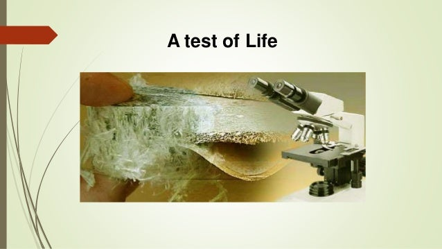 A test of Life