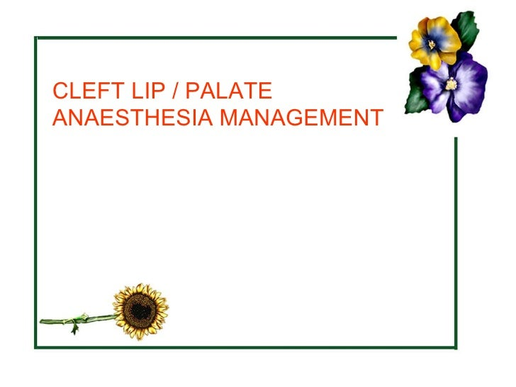 Cleft lip and palate -ankit jain. Ppt video online download.