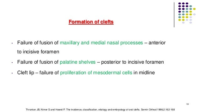Formation of clefts • Failure of fusion of maxillary and medial nasal processes – anterior to incisive foramen • Failure o...