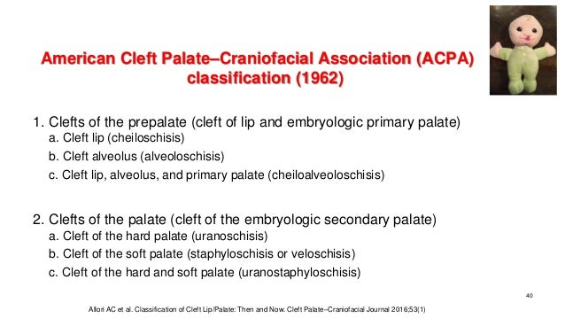 American Cleft Palate–Craniofacial Association (ACPA) classification (1962) 1. Clefts of the prepalate (cleft of lip and e...