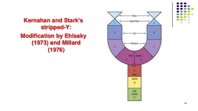 Kernahan and Stark's stripped-Y: Modification by Ehlsaky (1973) and Millard (1976) 44