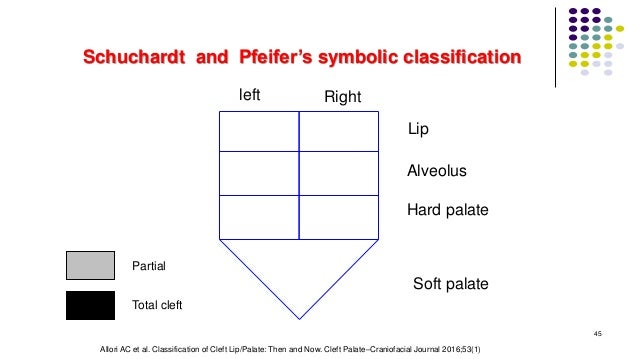 Schuchardt and Pfeifer's symbolic classification left Right Lip Alveolus Hard palate Soft palate Total cleft Partial 45 Al...