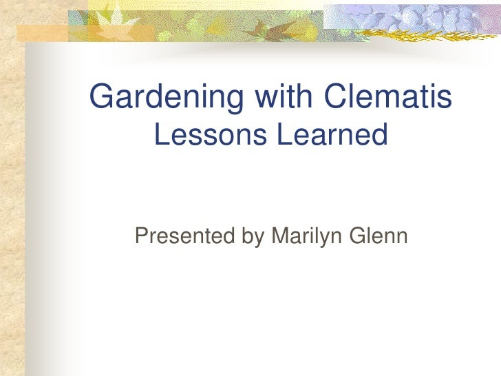 Gardening with Clematis     Lessons Learned     Presented by Marilyn Glenn