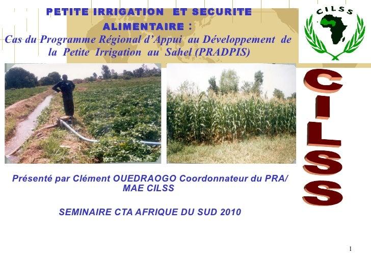 PETITE IRRIGATION ET SECURITE ALIMENTAIRE :  Cas du Programme Régional d'Appui  au Développement  de  la  Petite  Irriga...