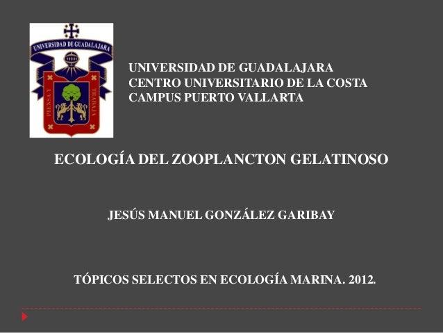 UNIVERSIDAD DE GUADALAJARA         CENTRO UNIVERSITARIO DE LA COSTA         CAMPUS PUERTO VALLARTAECOLOGÍA DEL ZOOPLANCTON...