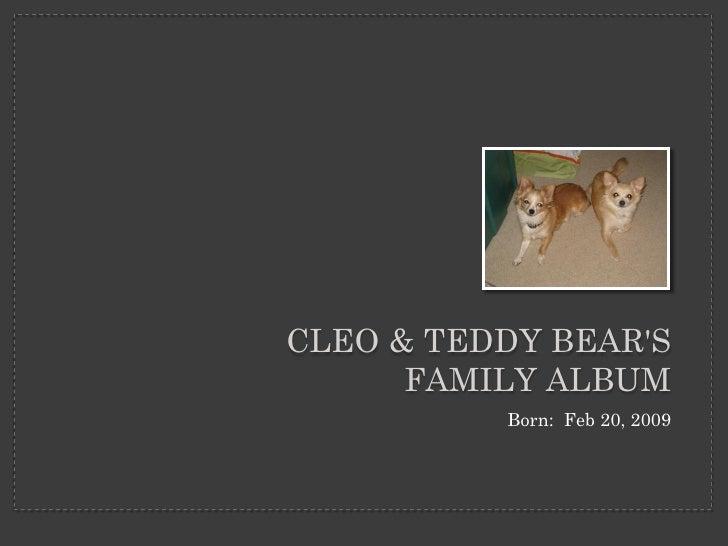 CLEO & TEDDY BEAR'S       FAMILY ALBUM           Born: Feb 20, 2009