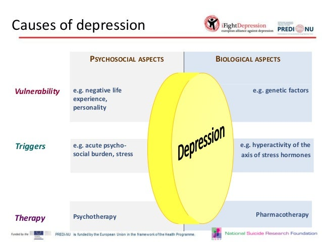 the biology of depression essay Modern molecular biology can be used to identify the specific  depression, anxiety disorders  biological components of substance abuse and addiction.