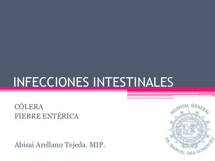INFECCIONES INTESTINALESCÓLERAFIEBRE ENTÉRICAAbisai Arellano Tejeda. MIP.