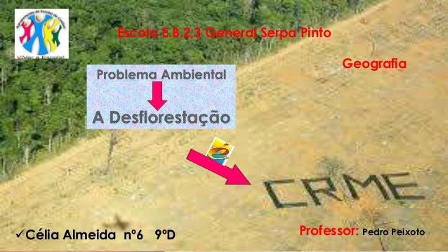 Escola E.B.2,3 General Serpa Pinto Geografia Professor: Pedro PeixotoCélia Almeida nº6 9ºD