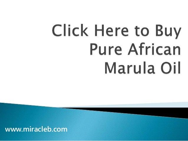 www.miracleb.com