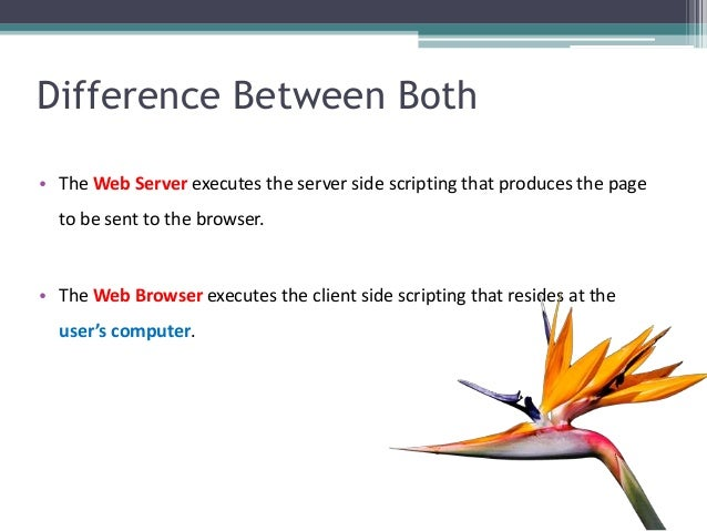 Difference Between Both • The Web Server executes the server side scripting that produces the page to be sent to the brows...