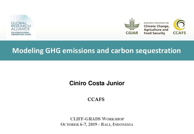 Ciniro Costa Junior CCAFS CLIFF-GRADS WORKSHOP OCTOBER 6-7, 2019 - BALI, INDONESIA Modeling GHG emissions and carbon seque...