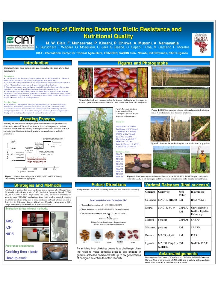Breeding of Climbing Beans for Biotic Resistance and                                                                      ...
