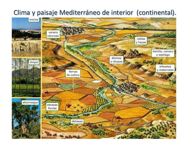 Clima y paisajes de espa a for Clima mediterraneo de interior