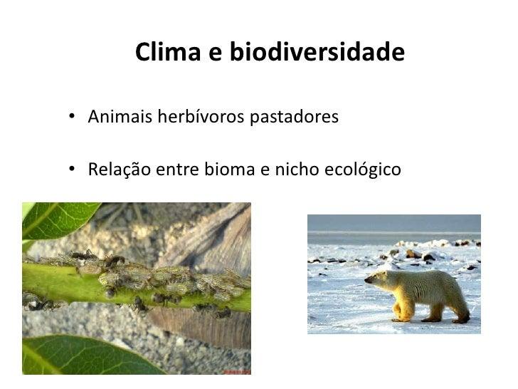 Clima e biodiversidade• Animais herbívoros pastadores• Relação entre bioma e nicho ecológico