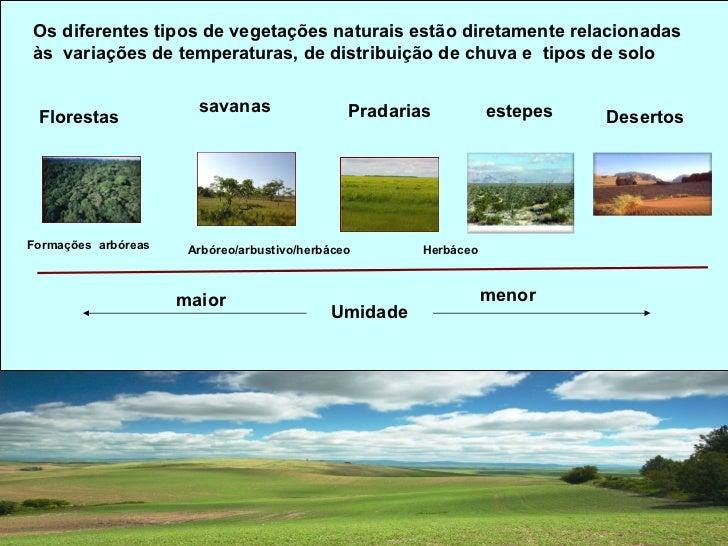 Principais tipos de climas e respectivas vegetações                 distribuição mundial