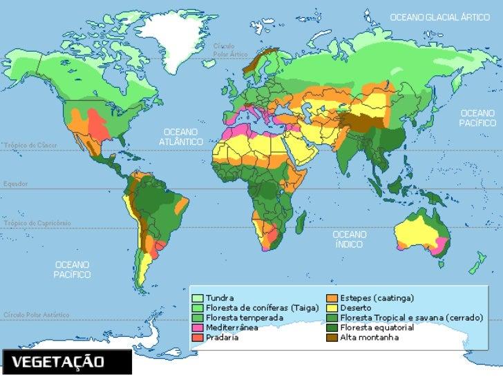 Clima Equatorial/Floresta EquatorialCaracterísticas do climaAs temperaturas médias mensais são elevadasao longo de todo an...