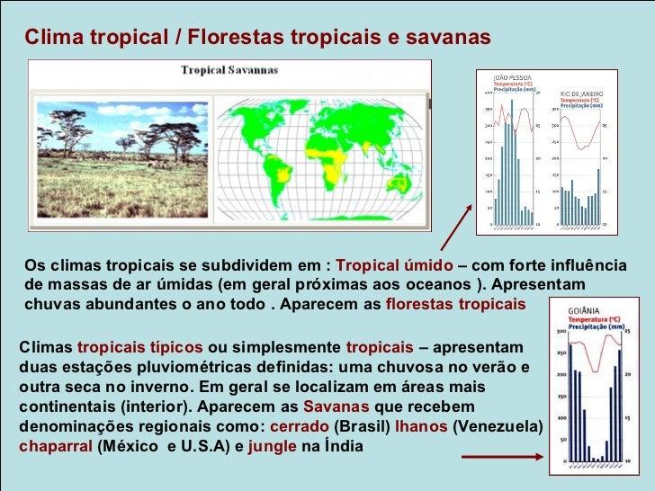 Clima temperado oceânico/ Floresta temperada ou caducifóliaApresentam estações bem definidas (verão, outono,inverno e prim...