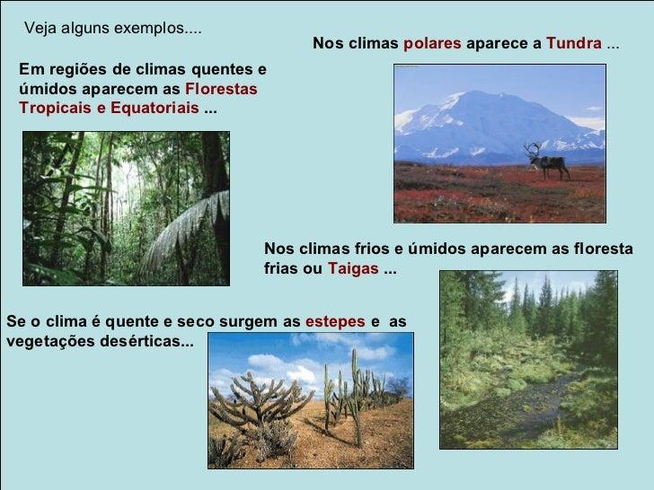 Veja alguns exemplos....                                     Nos climas polares aparece a Tundra ... Em regiões de climas ...