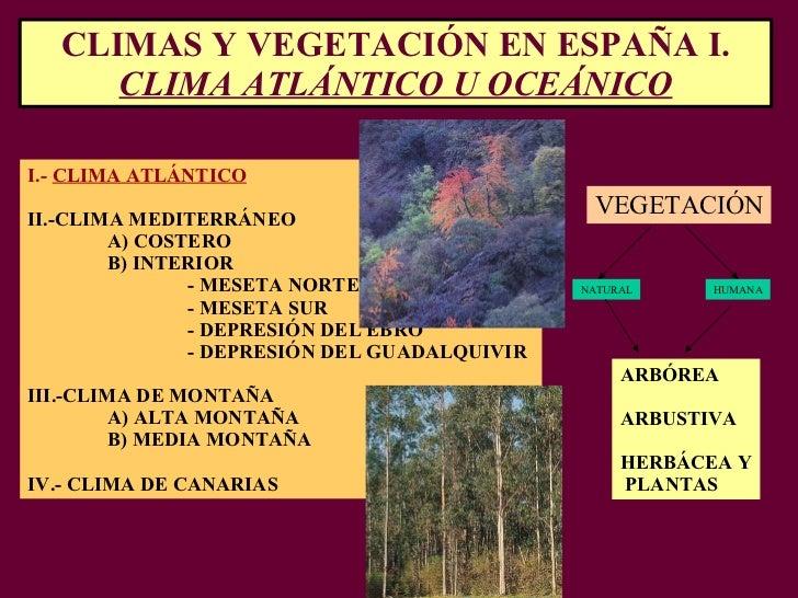 CLIMAS Y VEGETACIÓN EN ESPAÑA I.  CLIMA ATLÁNTICO U OCEÁNICO I.-  CLIMA ATLÁNTICO II.-CLIMA MEDITERRÁNEO A) COSTERO B) INT...