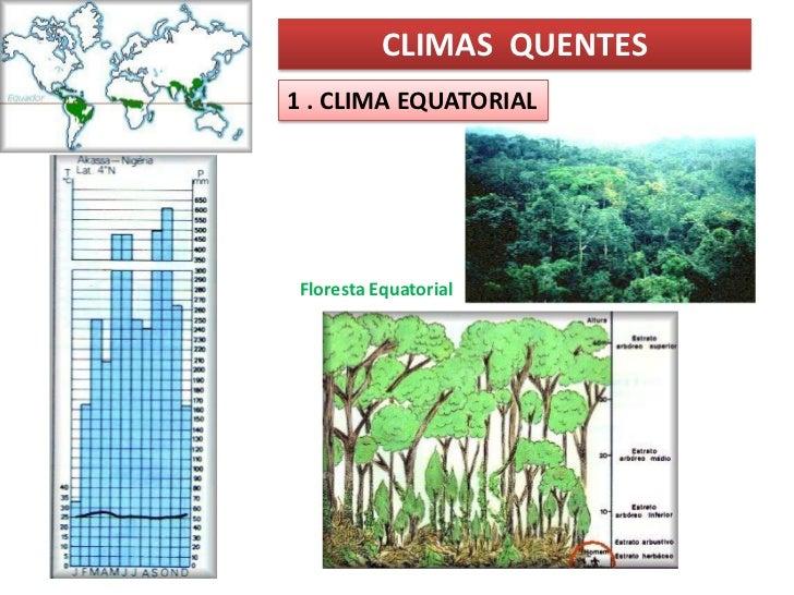 CLIMAS QUENTES1 . CLIMA EQUATORIALFloresta Equatorial