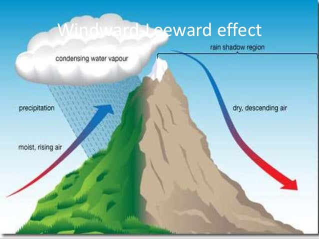 the movement of the westerly jet streams to the north of the Himalayas and the presence of the tropical easterly jet strea...