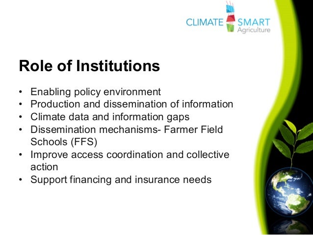 Climate smart business reports