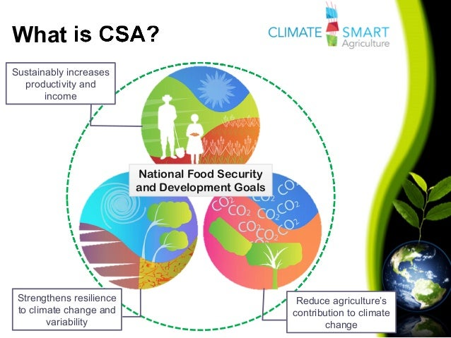 What is CSA?Sustainably increasesproductivity andincomeStrengthens resilienceto climate change andvariabilityReduce agricu...