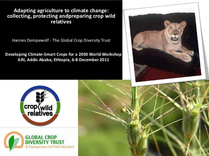 Adapting agriculture to climate change:collecting, protecting andpreparing crop wild                   relatives   Hannes ...