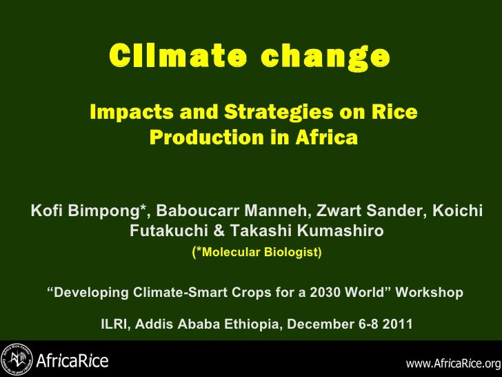 Climate change Impacts and Strategies on Rice Production in Africa <ul><ul><li>Kofi Bimpong*, Baboucarr Manneh, Zwart Sand...