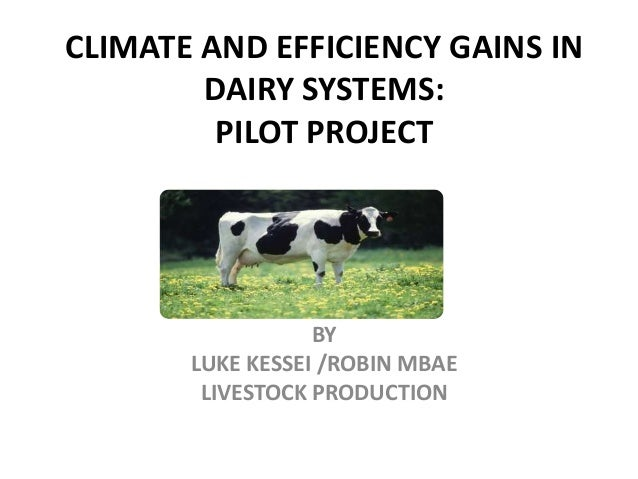 CLIMATE AND EFFICIENCY GAINS IN DAIRY SYSTEMS: PILOT PROJECT BY LUKE KESSEI /ROBIN MBAE LIVESTOCK PRODUCTION
