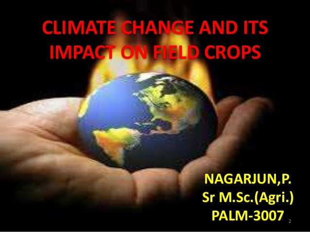 climate change and its effect in Climate change will make monsoons unpredictable as a result, rain-fed wheat cultivation in south asia will suffer in a big way and the total cereal production will go down.