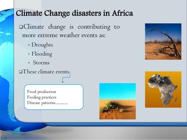 thesis on climate change and food security Thesis on impact of climate change on food security us-based service has hired native writers with graduate degrees, capable of completing all types of papers on any.