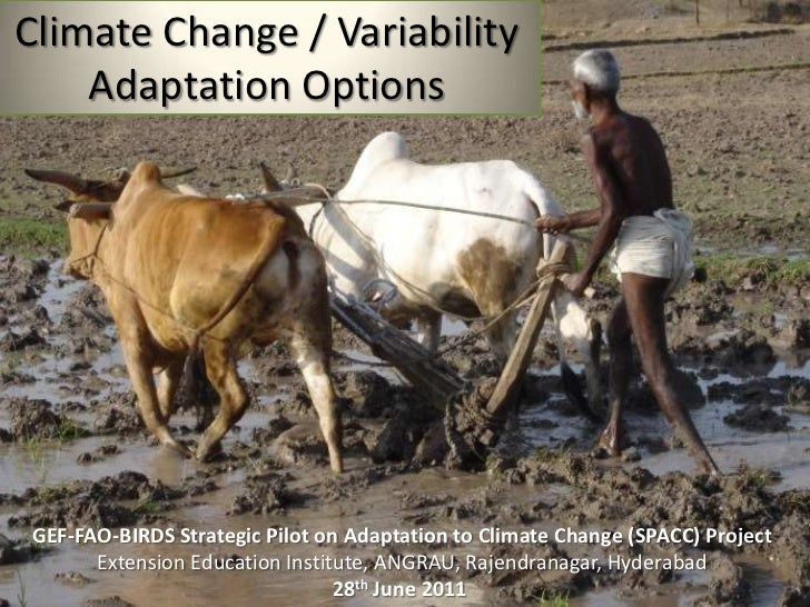 Climate Change / Variability Adaptation Options <br />GEF-FAO-BIRDS Strategic Pilot on Adaptation to Climate Change (SPACC...