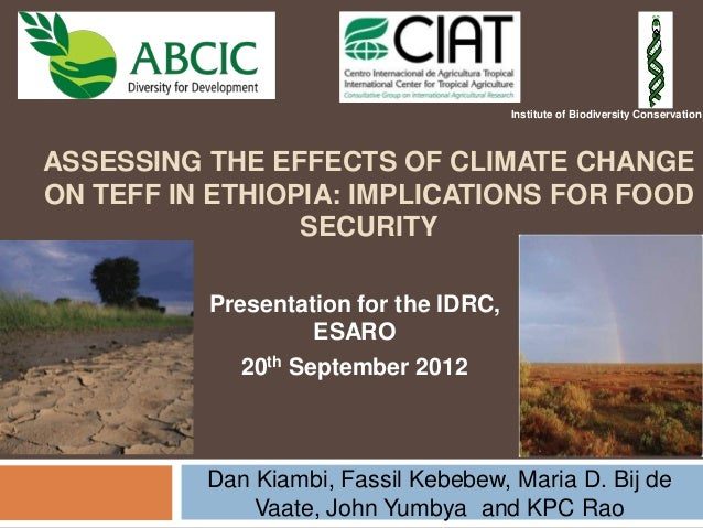 ASSESSING THE EFFECTS OF CLIMATE CHANGE ON TEFF IN ETHIOPIA: IMPLICATIONS FOR FOOD SECURITY Dan Kiambi, Fassil Kebebew, Ma...
