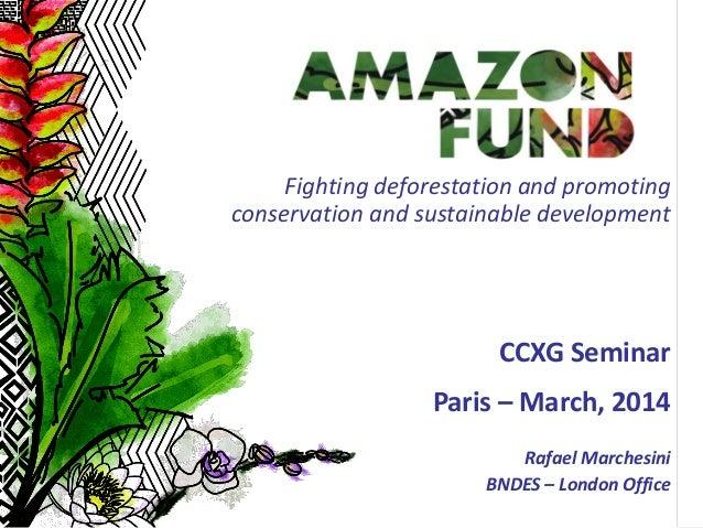 1 CCXG Seminar Paris – March, 2014 Rafael Marchesini BNDES – London Office Fighting deforestation and promoting conservati...
