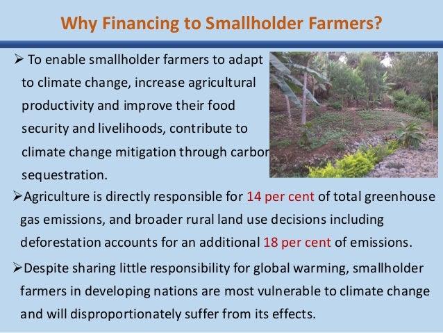 the livelihood impact of the smallholder Improving smallholder livelihoods: effectiveness of improving smallholder livelihoods: the supply chainand the impact of certification on smallholder.