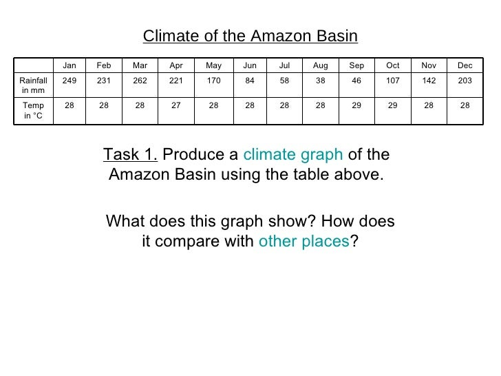 Climate in the rainforest