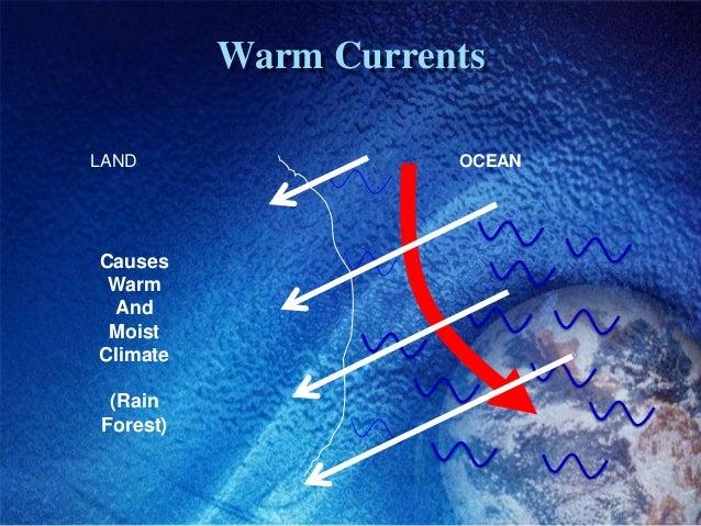 Warm CurrentsLAND                 OCEANCauses Warm And MoistClimate (RainForest)