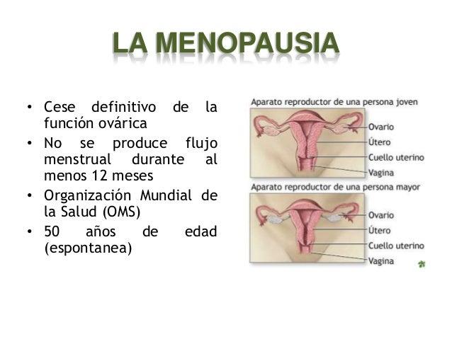 LA MENOPAUSIA • Cese definitivo de la función ovárica • No se produce flujo menstrual durante al menos 12 meses • Organiza...