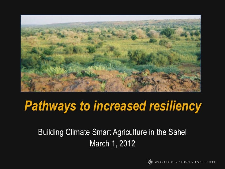 Pathways to increased resiliency  Building Climate Smart Agriculture in the Sahel                  March 1, 2012