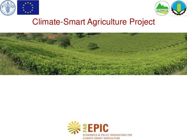 Climate-Smart Agriculture Project