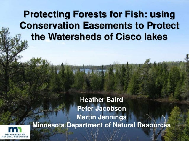 Protecting Forests for Fish: using Conservation Easements to Protect the Watersheds of Cisco lakes Heather Baird Peter Jac...