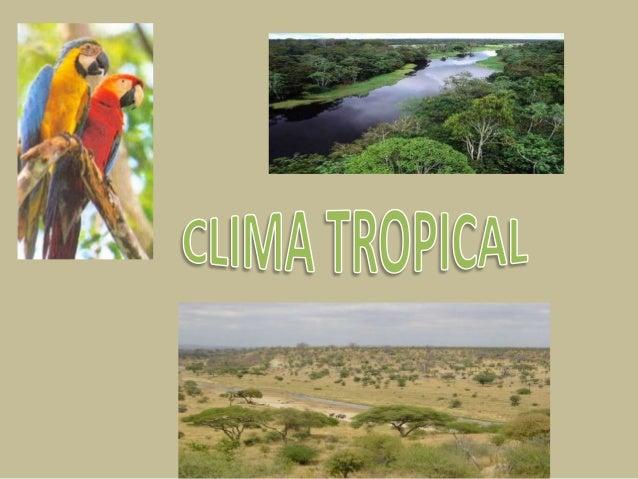 Un clima tropical es un tipo de clima típico de lostrópicos, se caracteriza porque en todas susdivisiones, se encuentra ba...